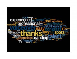 Twitter Wordle from voice over talent Doug Turkel